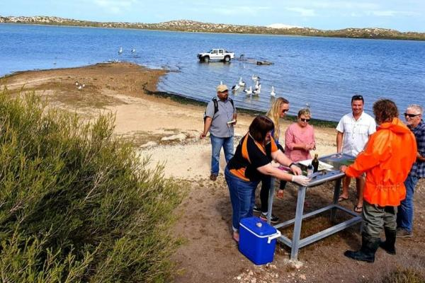 Coorong tours