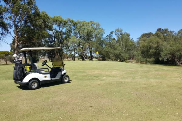 Meningie SA Local Activities Lake Albert Golf Club