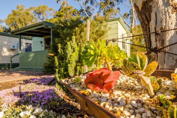 Meningie Accommodation Swan 5 Garden Coorong CABINS